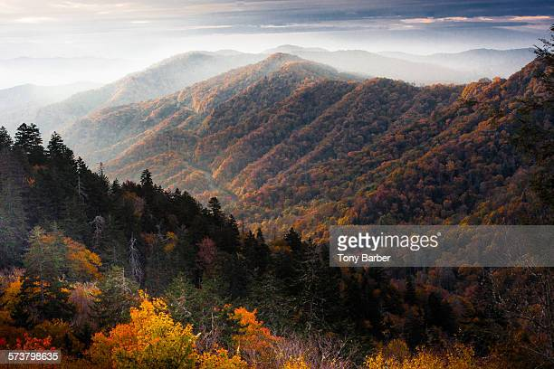 smoky mountain sunrise - tennessee stock pictures, royalty-free photos & images