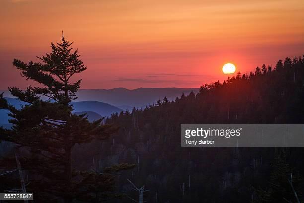 smoky mountain sunset - clingman's dome fotografías e imágenes de stock