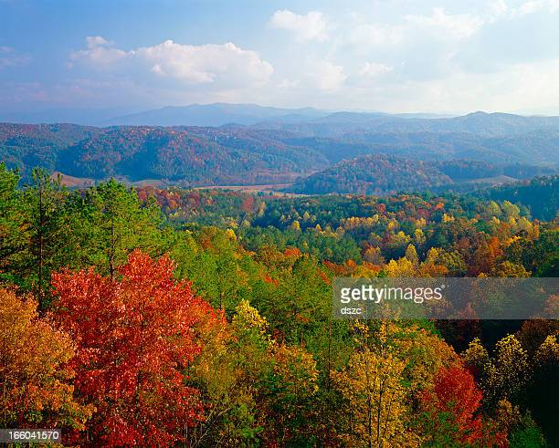smoky mountains autumn - tennessee stock pictures, royalty-free photos & images