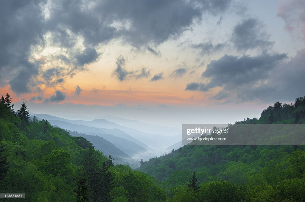 Smoky Mountains in May : Stock Photo