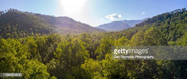 smoky mountains sunrise - appalachia stock pictures, royalty-free photos & images