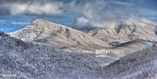 smoky mountains winter panoramic - newfound gap stock photos and pictures
