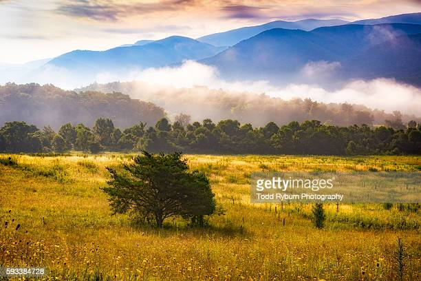 smoky - cades cove stock pictures, royalty-free photos & images