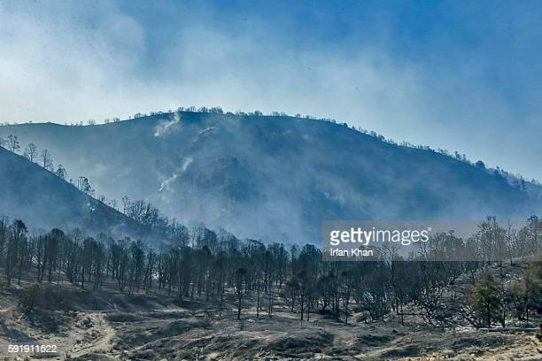 Smoldering hillside from Blue Cut Fire along Highway 2 on the way to Wrightwood