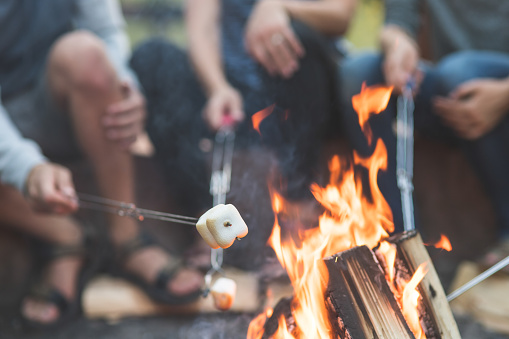 Smores by the campfire 1141568805