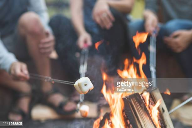 smores by the campfire - camping stock pictures, royalty-free photos & images