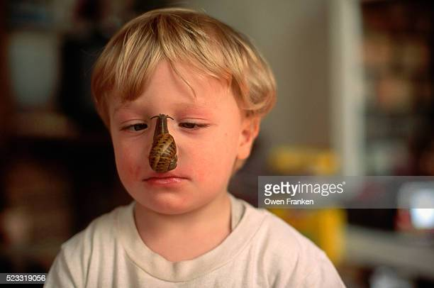 snail crawling on boy's nose - garden snail stock photos and pictures