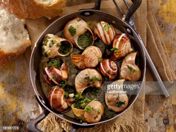cassolette d'escargots - cuisine française photos et images de collection
