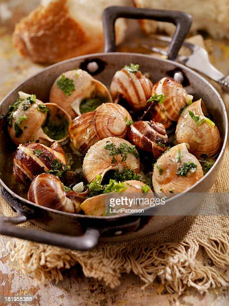 escargot - snail stock pictures, royalty-free photos & images