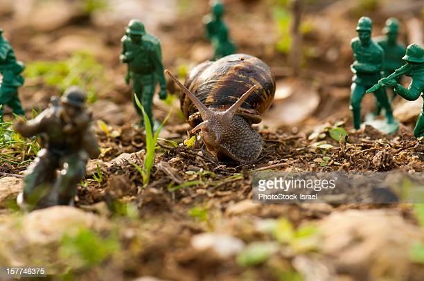 Snail warfare