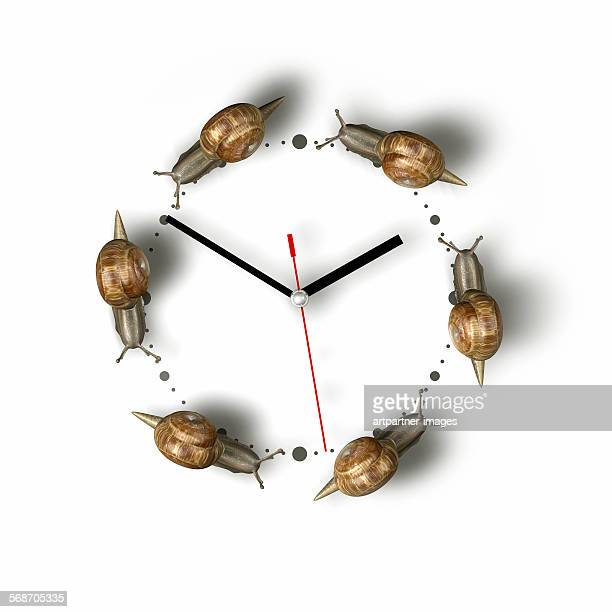 Snails crawling around a clock