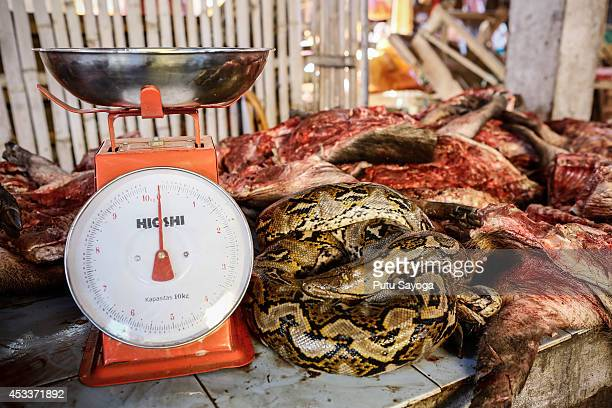 Snake and wild boars meat for sale at Langowan traditional market on August 9 2014 in Langowan North Sulawesi The Langowan traditional market is...