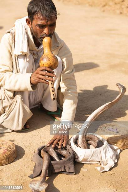 snake charmer and his cobras at new delhi, india - amateur theater stock pictures, royalty-free photos & images