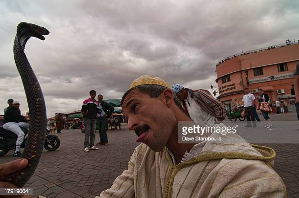 CONTENT] snake charmer at the Djemma el Fna in Marrakech Morocco