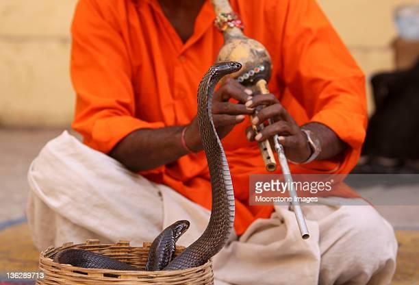Schlangenbeschwörer in Jaipur, Indien