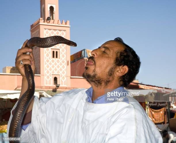snake charmer in marrakech - reptile pattern stock pictures, royalty-free photos & images