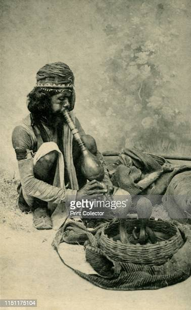 Snake Charmer'. Indian man with basket of cobras. Postcard. Artist Unknown.