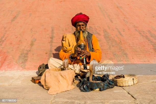 A snake charmer is playing flute to get his cobra dancing at the holy river Ganges at Dashashwamedh Ghat Main Ghat in the suburb Godowlia