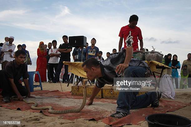 A snake charmer kisses a King Cobra in front of a crowd at Cahaya Bulan beach on April 27 2013 in Kota Bharu Malaysia The election set for May 05...