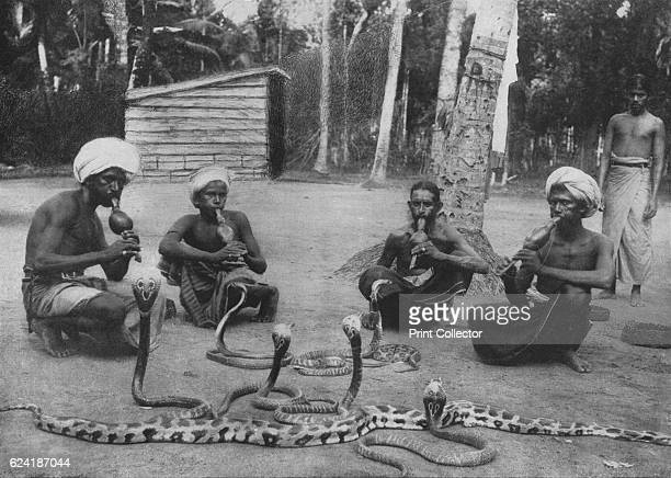 Snake Charmers' c1890 From The Hundred Best Views of Ceylon [Plâté Ltd Colombo Kandy Nuwara Eliya 1910] Artist Alfred William Amandus Plate