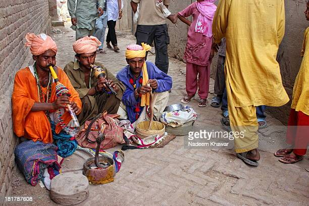 CONTENT] Snake charming is the practice of pretending to hypnotise a snake by playing an instrument called pungi A typical performance may also...