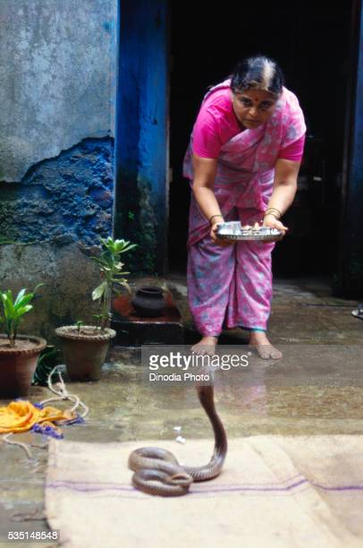 Snake festival at Battis Shirala in India.