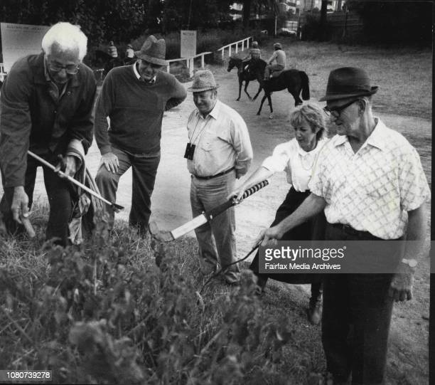 Snake hunt in the wee hours at Randwick racecourseGeorge Cann properly equipped will eventually add the Tiger Snake to his collection but Colonel...