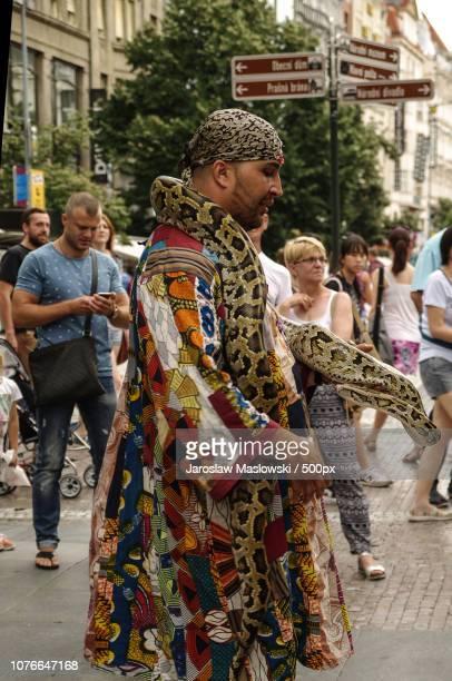 snake in city - maslowski stock-fotos und bilder