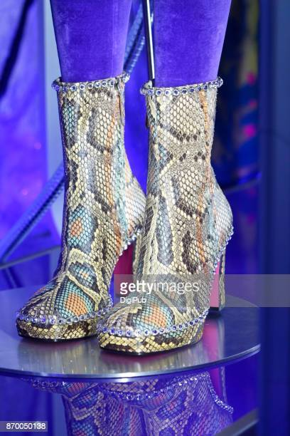 Snake leather boots on blue background