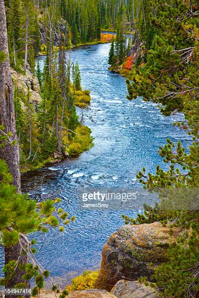 Snake River Flows Through Yellowstone Park, Wyoming in Early Autumn