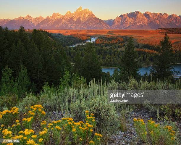 snake river lookout - grand teton national park stock pictures, royalty-free photos & images