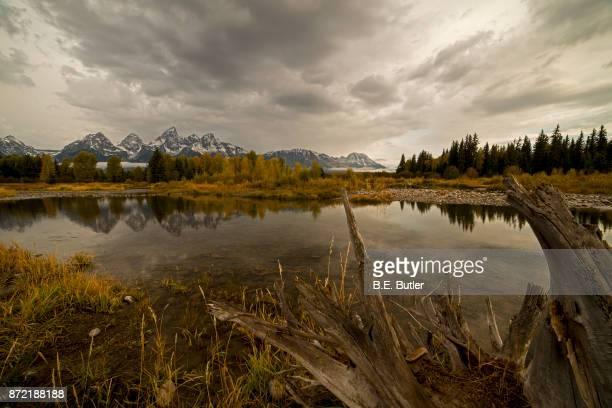 Snake River Reflection