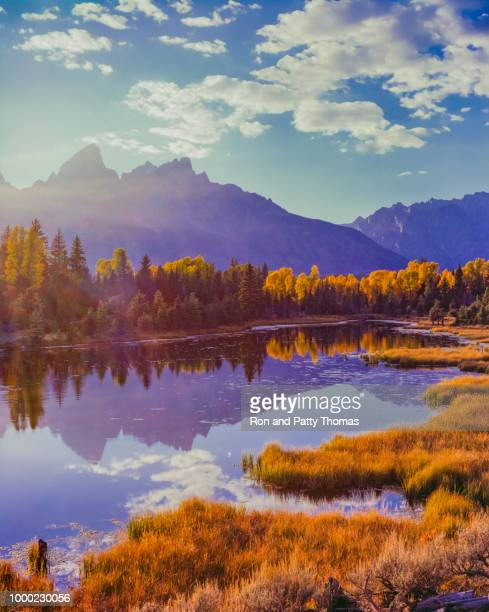 snake river with aspens  in autumn at grand teton national park - jackson hole stock pictures, royalty-free photos & images