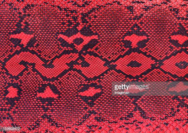 snakeskin - snakeskin stock pictures, royalty-free photos & images