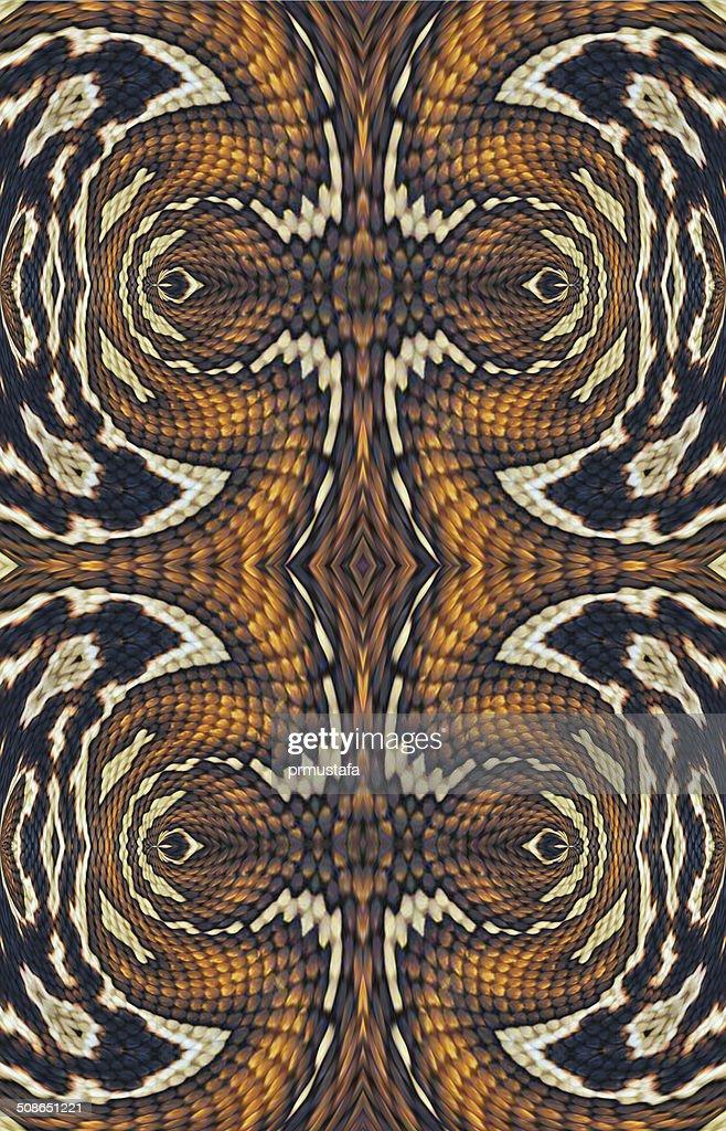 Snakeskin : Stock Photo