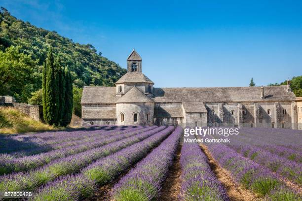 sénanque abbey with lavender fields - cisterciense - fotografias e filmes do acervo