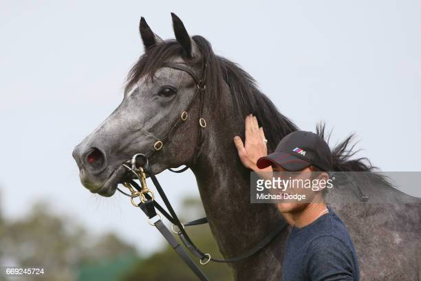 Sneakers after winning the Elvis Ricky Thurgood Handicap at Ladbrokes Park Lakeside Racecourse on April 17 2017 in Springvale Australia