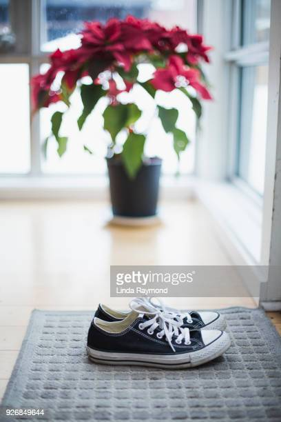 sneakers on a carpet - linda wilton stock pictures, royalty-free photos & images