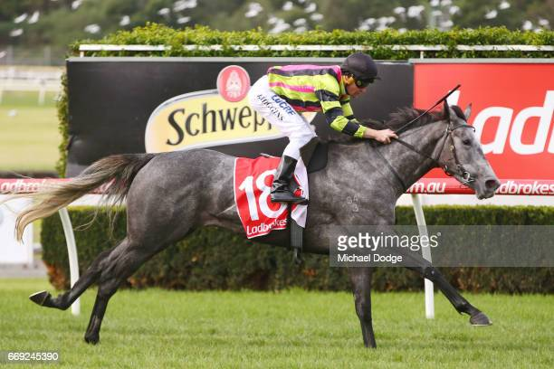 Sneakers ridden by Brian Higgins wins the Elvis Ricky Thurgood Handicap at Ladbrokes Park Lakeside Racecourse on April 17 2017 in Springvale Australia