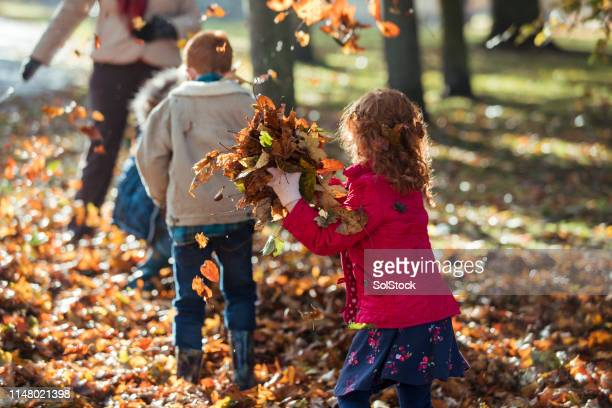 sneaky sibling in autumn park - law stock pictures, royalty-free photos & images