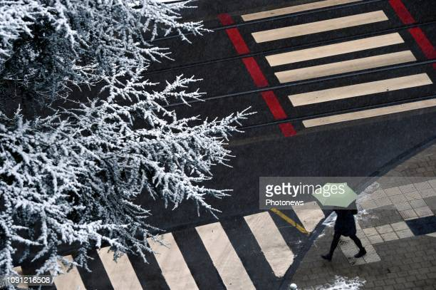Sneeuw in Brussel Neige sur Bruxelles Pict by Christophe Licoppe © Photo News via Getty Images