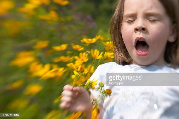 sneeze i - allergies stock photos and pictures
