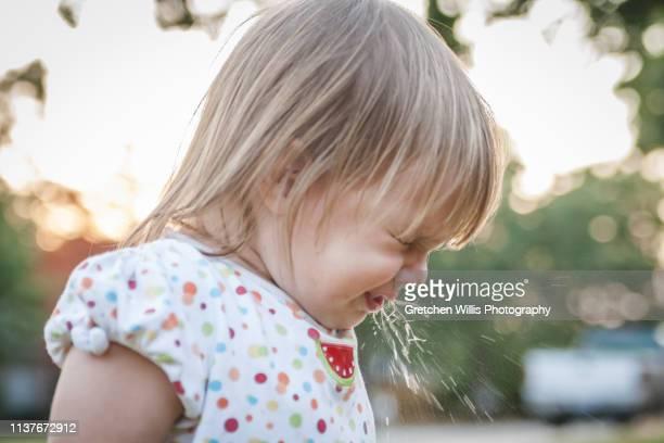 sneeze - arlington texas imagens e fotografias de stock