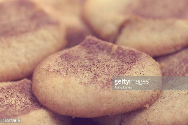 snickerdoodles - snickerdoodle stock pictures, royalty-free photos & images
