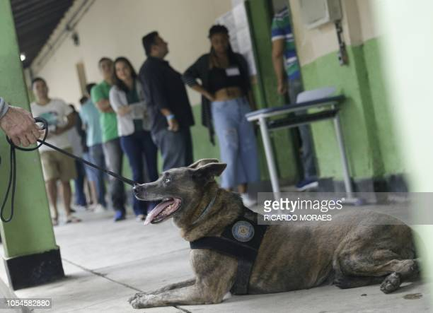 A sniffer dog is seen as people wait in line to cast their votes at the polling centre in Rio de Janeiro Brazil October 28 2018 Brazilians will...