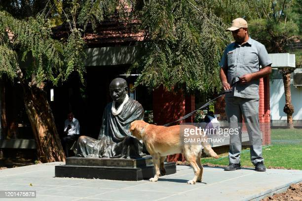 A sniffer dog of the Gujarat's Police bomb detection and disposal squad check the statue of Mahatma Gandhi at the Mahatma Gandhi Ashram in Ahmedabad...
