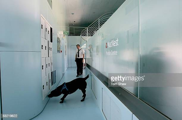 A sniffer dog works his way through the Media Centre prior to the NatWest Challenge between Australia and England at Lords on July 10 2005 in London...