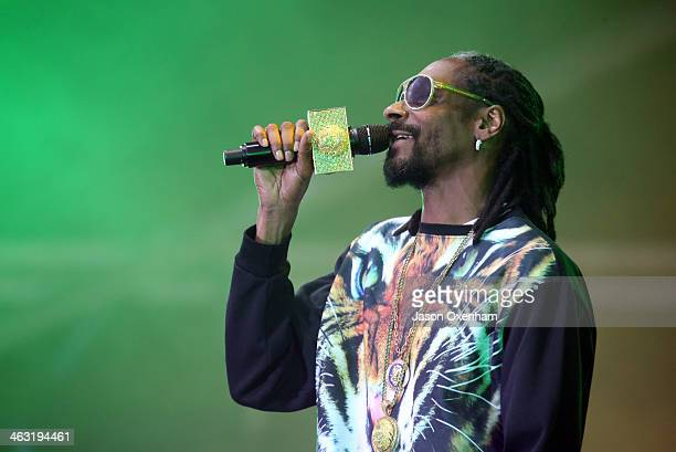 Snoop Dogg aka Snoop Lion performs live for fans during the 2014 Big Day Out Festival at Western Springs on January 17 2014 in Auckland New Zealand