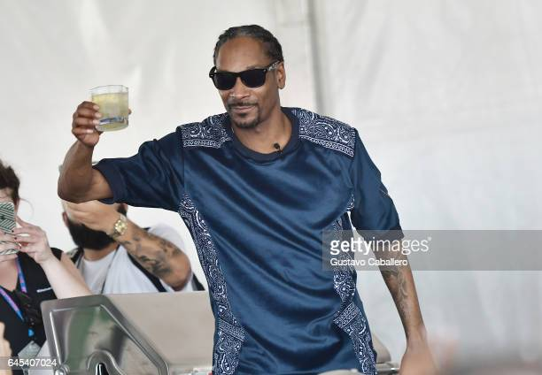Snoop Dogg attends Goya Foods' Grand Tasting Village Featuring Mastercard Grand Tasting Tents KitchenAid Culinary Demonstrations on February 25 2017...