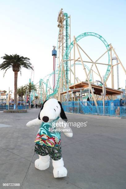 Snoopy attends the Knott's Berry Farm kick off preview party launching new dive coaster HangTime at Knott's Berry Farm on May 17 2018 in Buena Park...